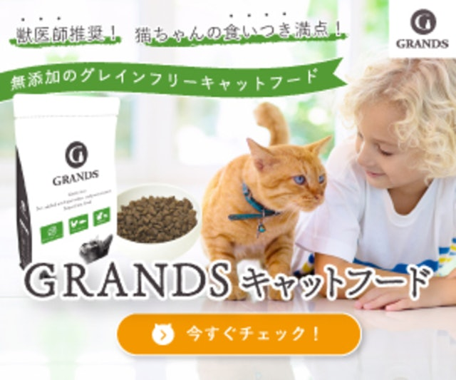 GRANDS(グランツ)