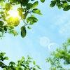 エステティシャンが愛用するおすすめ紫外線対策グッズ7選