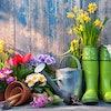ガーデンデザイナーが選ぶおすすめガーデニングツール10選