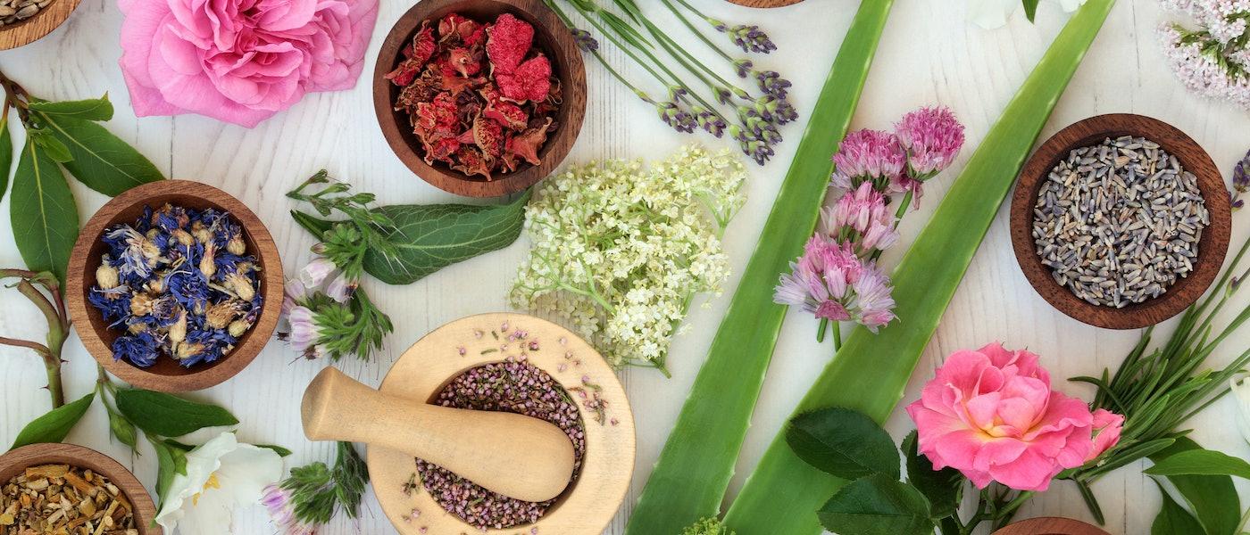 オーガニック植物療法コンサルタントが愛用するおすすめハーブグッズ9選