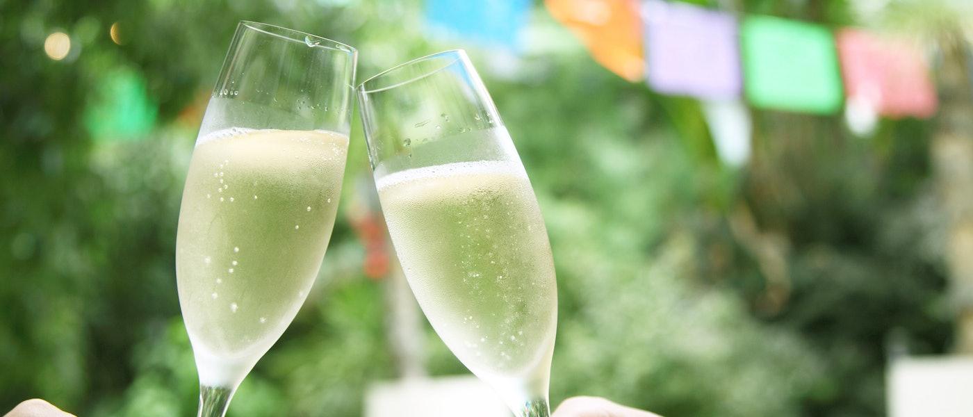 パーティの手土産にしたい日本ワイン!ワインエキスパート厳選の10本
