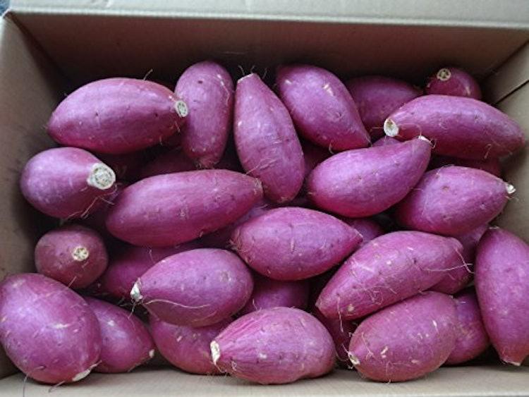 水郷佐原4代目島矢 シルクスウィート ねっとり甘い さつま芋の画像