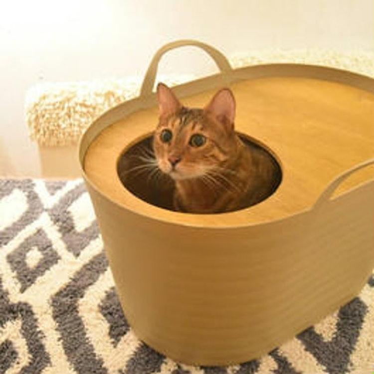 猫カフェキューリグ 上から入る猫トイレ 1枚目
