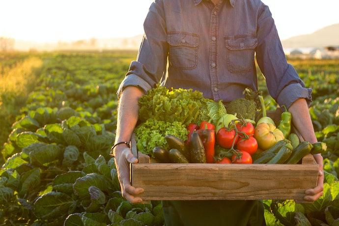 口コミ③:野菜セットの中身を変更できない!
