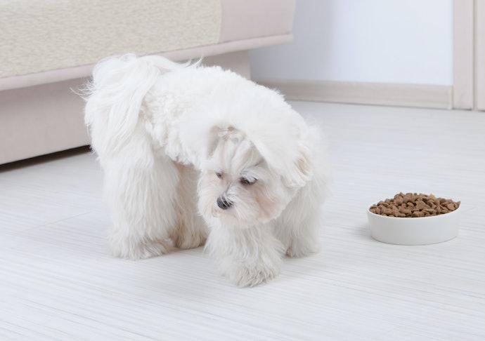 口コミ②:犬がまったく食いつかない!