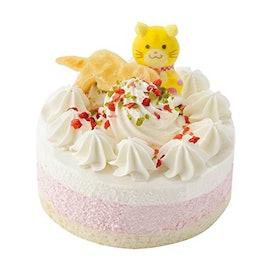 猫用ケーキ ペットライブラリー 猫用 記念日ケーキ 1枚目
