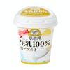 小岩井 生乳(なまにゅう)100%ヨーグルト 400g×6個