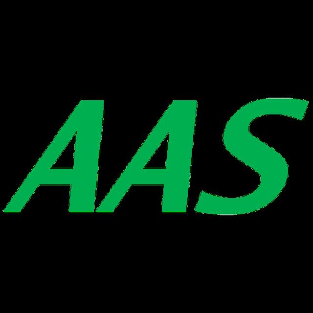 AAS AAS 1枚目